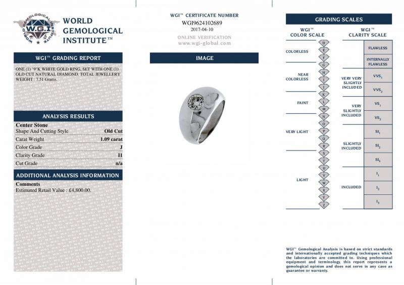 9ct White Gold Diamond Ring Order Online Today Delivery